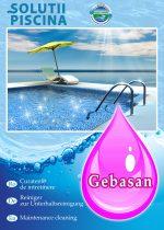 Gebasan